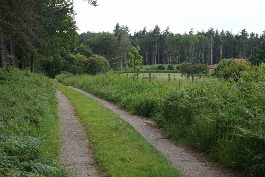 Burrow Cottage Track